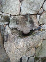 Fontana nella roccia